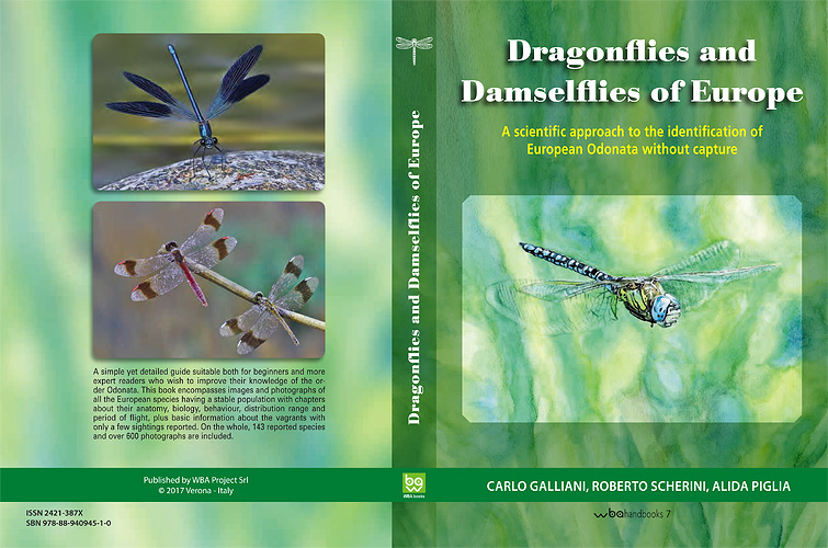 Diptera.info - Discussion Forum: Dragonflies and Damselflies of ...